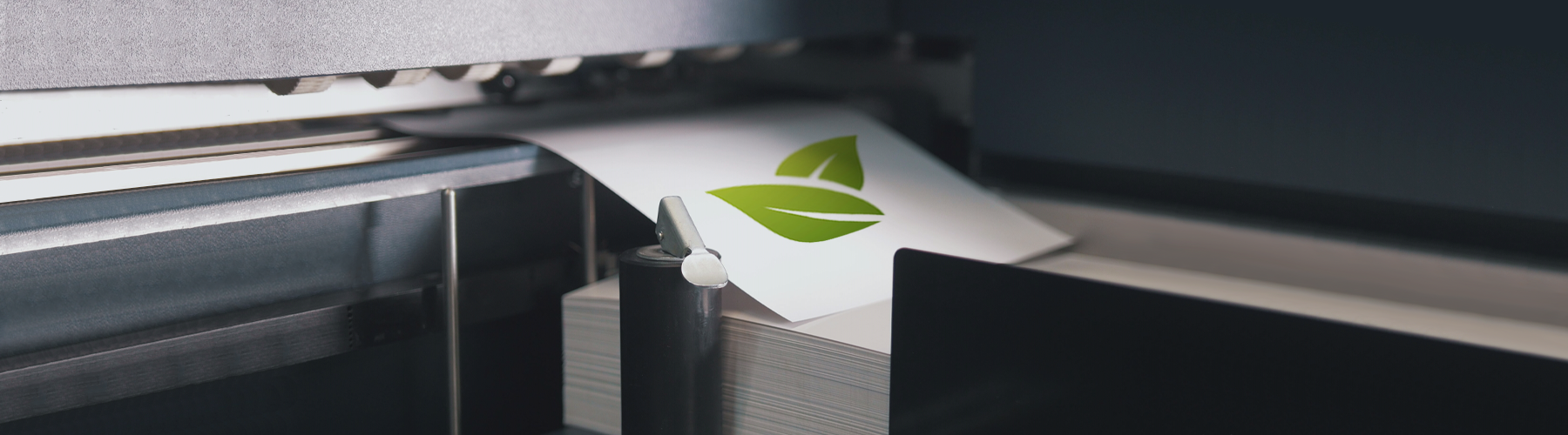 Cosa si intende per stampa ecologica?